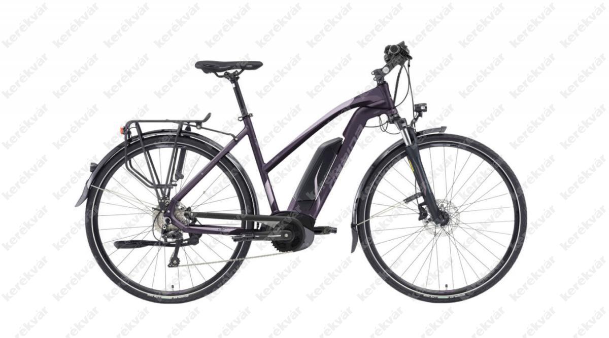 Gepida Alboin LS 9 woman's bicycle grey 2020